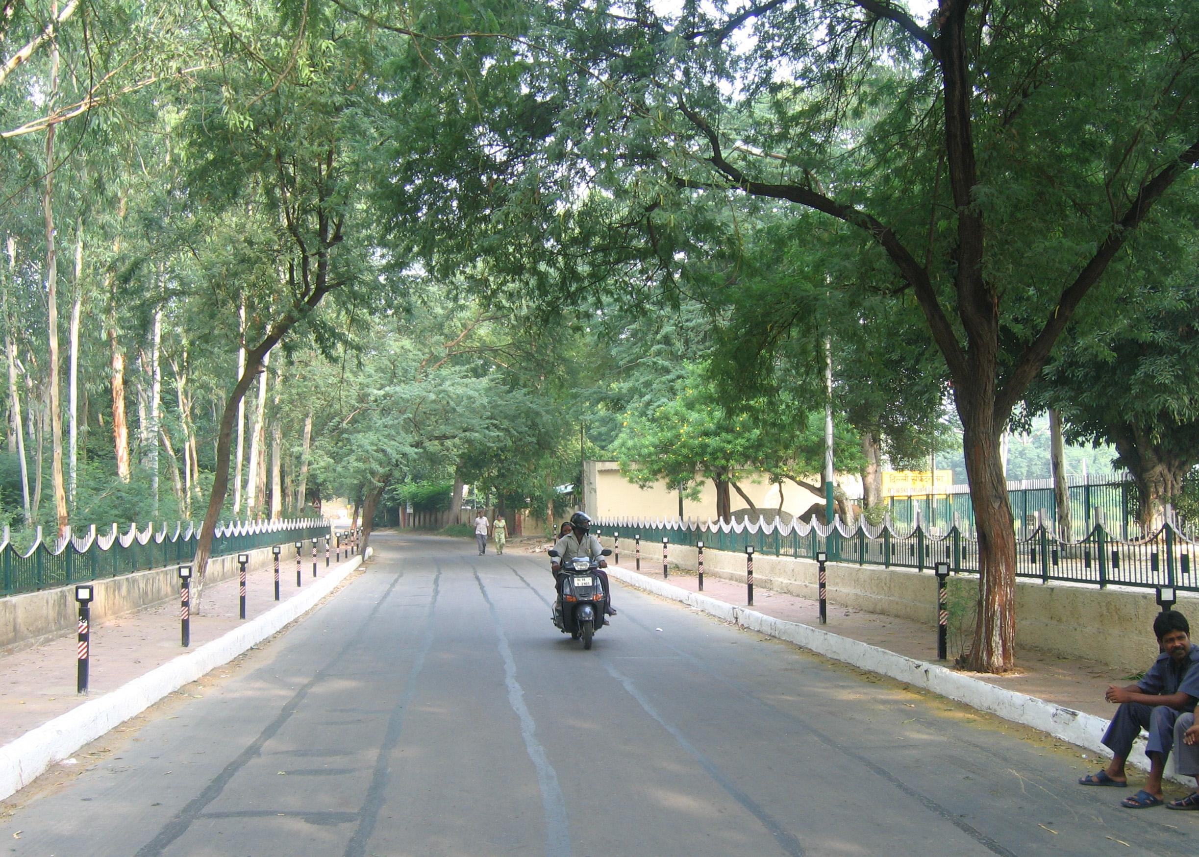 sud quartiers où loger à new delhi