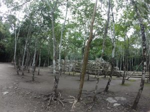 Coba-Ruins-cancun-to-merida-roadtrip3