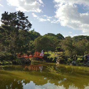 côte nord république dominicaine jardin-botanco-sd