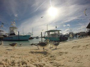 Isla-mujeres-cancun-to-merida-roadtrip