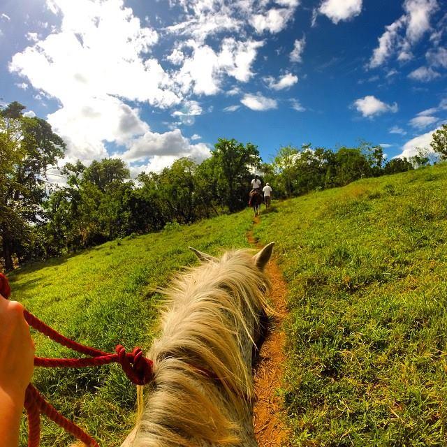 côte nord république dominicaine cabarete à dos de cheval